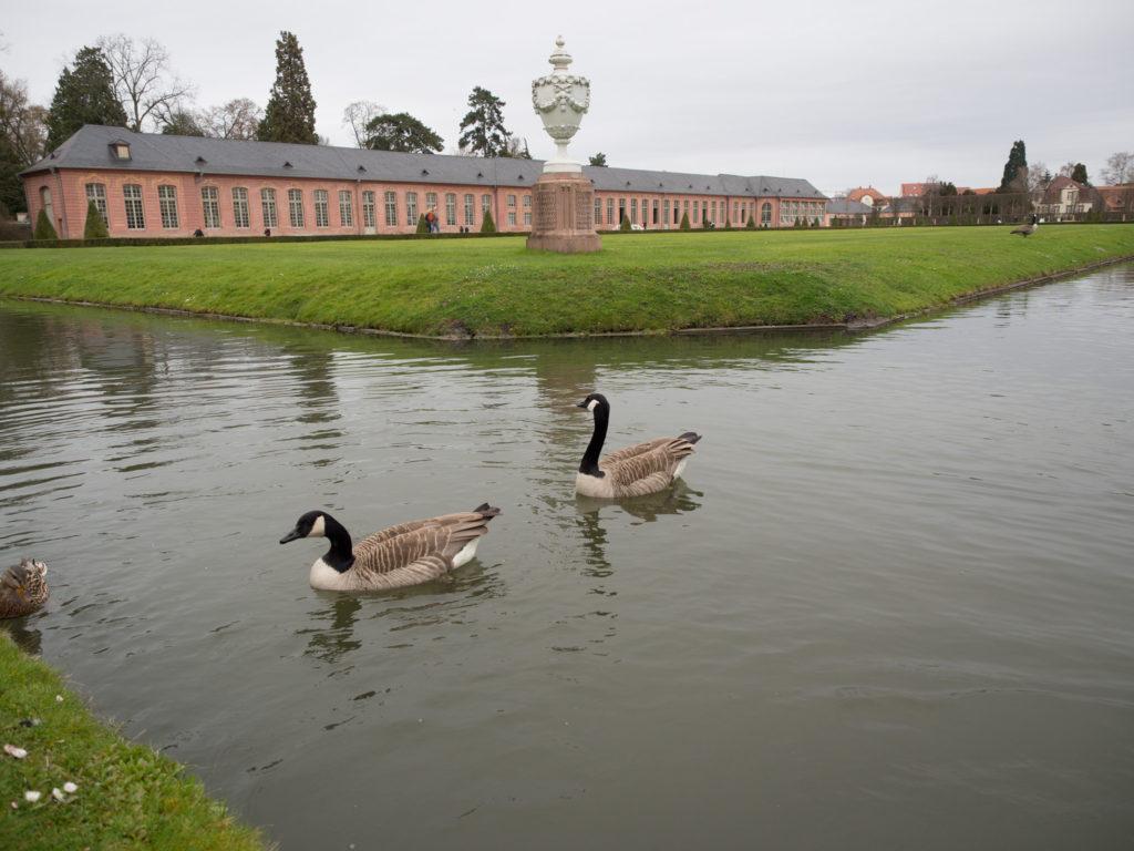 Palacio_Alemania_Veratrends